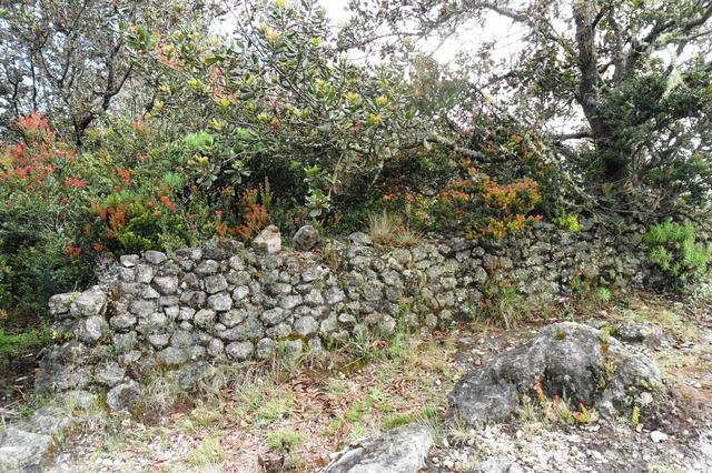 Mengintip Jejak Situs Purbakala Hindu Tertinggi di Pulau Jawa di Gunung Argopuro (27443)