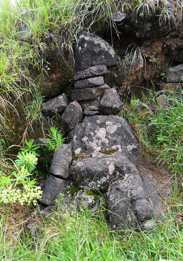 Mengintip Jejak Situs Purbakala Hindu Tertinggi di Pulau Jawa di Gunung Argopuro (27444)
