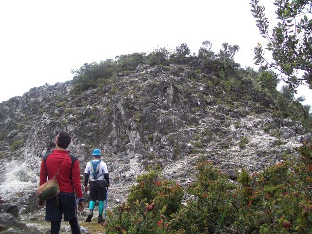 Mengintip Jejak Situs Purbakala Hindu Tertinggi di Pulau Jawa di Gunung Argopuro (27442)