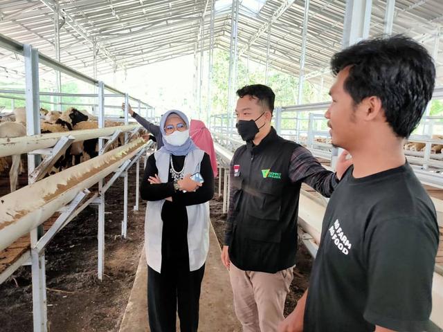 Sambut Tebar Hewan Kurban, DD FARM Siap Hadirkan Hewan Berkualitas Se Lampung (13003)