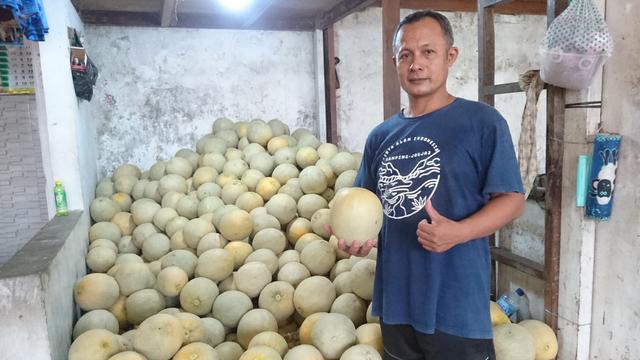 Di Balik Layar Perdagangan Melon: dari Klaten Dibilang Lebih Enak (766823)