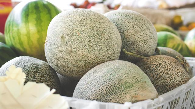 Di Balik Layar Perdagangan Melon: dari Klaten Dibilang Lebih Enak (766824)