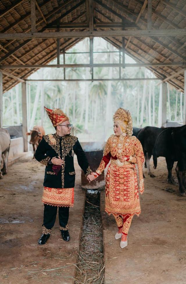 Viral: Bukan di Tempat Mewah, Pengantin Ini Pilih Foto Wedding di Kandang (616382)