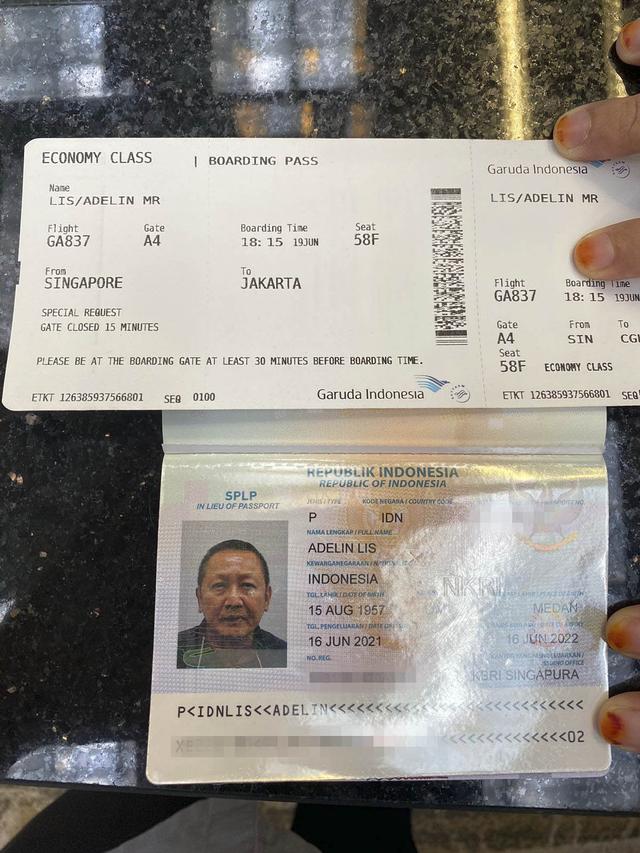 BREAKING NEWS: Buron Illegal Logging, Adelin Lis, Dideportasi ke Jakarta (54834)