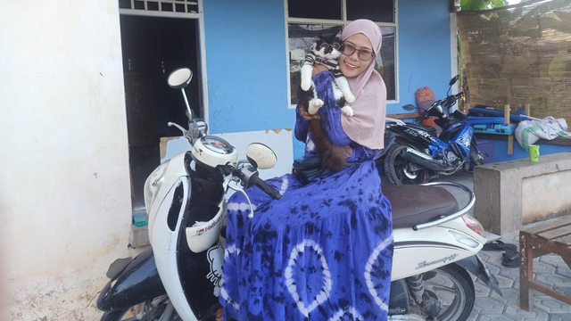 Cerita Pemilik Kucing Viral di Sulbar: Seperti Anak Sendiri, Tidur Bersama Suami (35015)