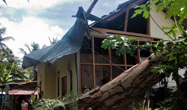 2 Unit Rumah di Padang Tertimpa Pohon, Beruntung Penghuni Selamat (816261)