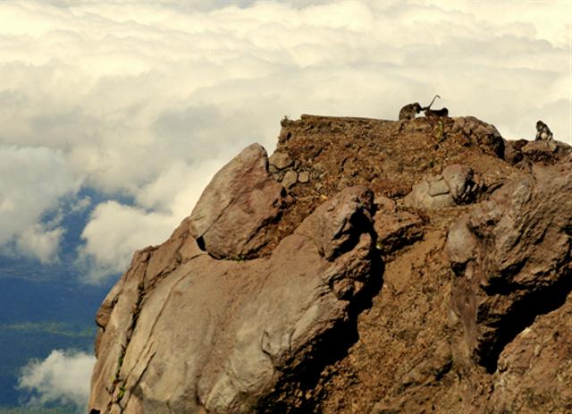 Hubungan Gunung Api Agung dan Pura Besakih dari Waktu ke Waktu (139041)
