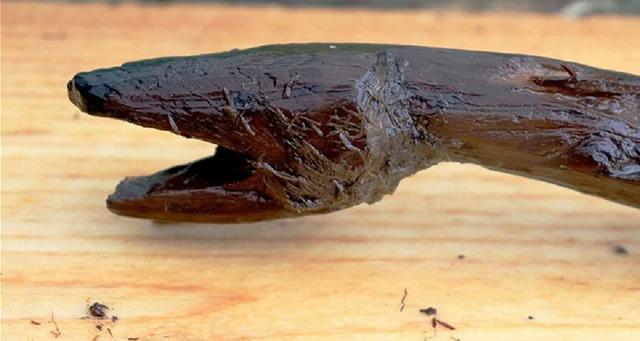 Tongkat Ular Berusia 4.400 Tahun Diduga Milik Dukun Finlandia Ditemukan (73564)