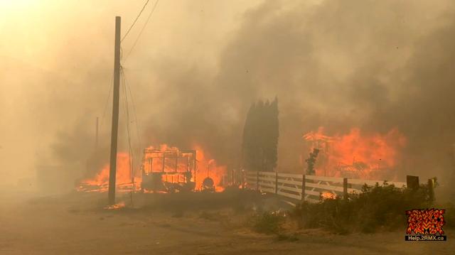 Foto: Dahsyatnya Kebakaran di Hutan Lytton, Kanada, Akibat Gelombang Panas (66554)