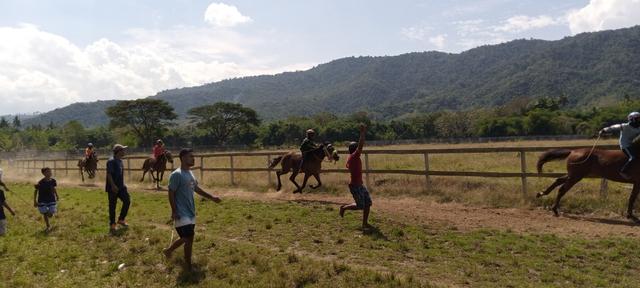 Budaya Pacoa Jara di Dompu: Keberanian Joki Cilik Membawa Kuda Pacu (193346)