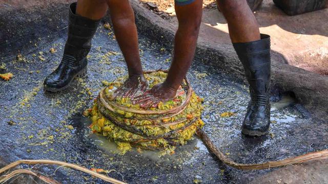 Goan Feni, Minuman Alkohol Khas India yang Terkubur Sejak 500 Tahun Lalu (966479)