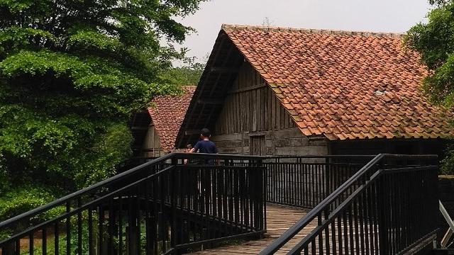 Rekreasi Sambil Belajar di D'Kandang Amazing Farm (39092)