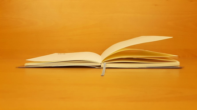Resensi Novel Perahu Kertas Lengkap dengan Penjelasannya (364085)