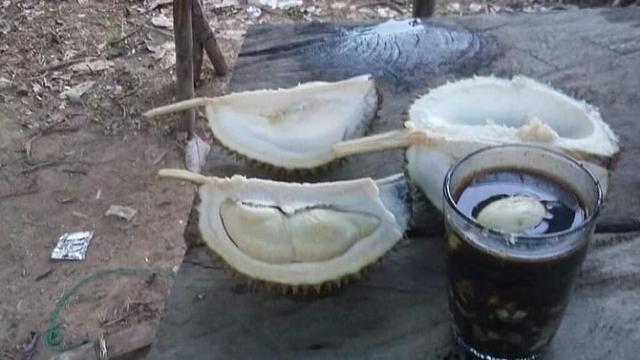 Desa Belimbing di Bangka Tengah Penghasil Durian (165909)