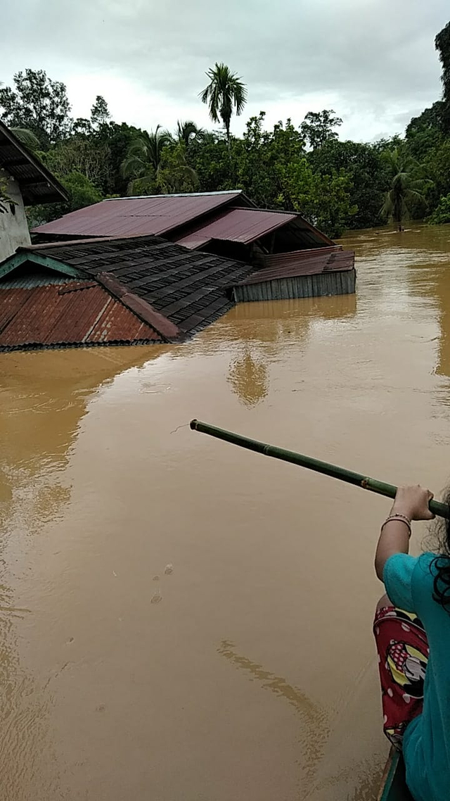 Banjir di Kapuas Hulu: 7 Kecamatan Terendam, 11 Rumah Hanyut (199281)