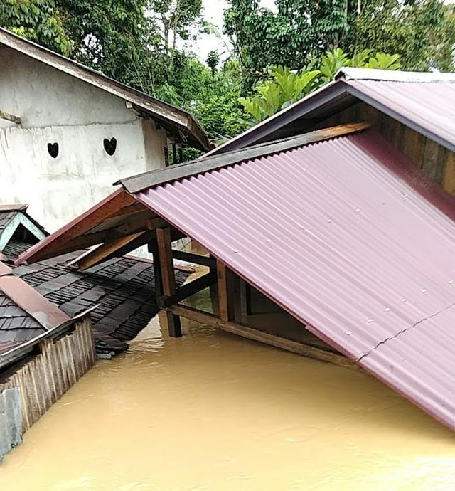Banjir di Kapuas Hulu: 7 Kecamatan Terendam, 11 Rumah Hanyut (199282)