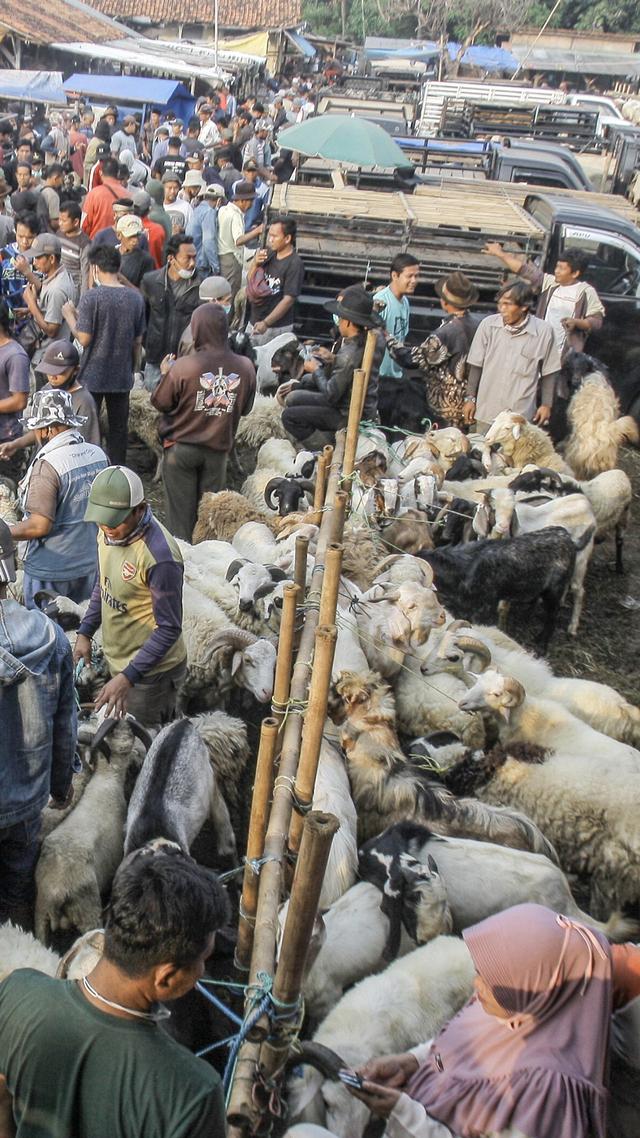 Foto: Ngeri-ngeri Sedap Kerumunan di Pasar Hewan Jonggol saat PPKM Darurat (894)