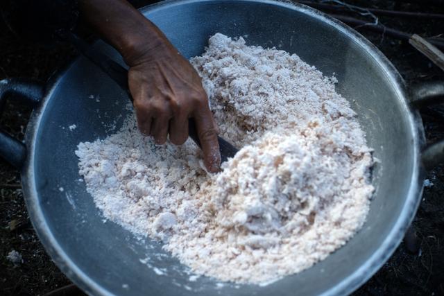 Mengenal Batoq, Makanan dari Sagu di Simuelue Kala Ekonomi Sulit (858890)