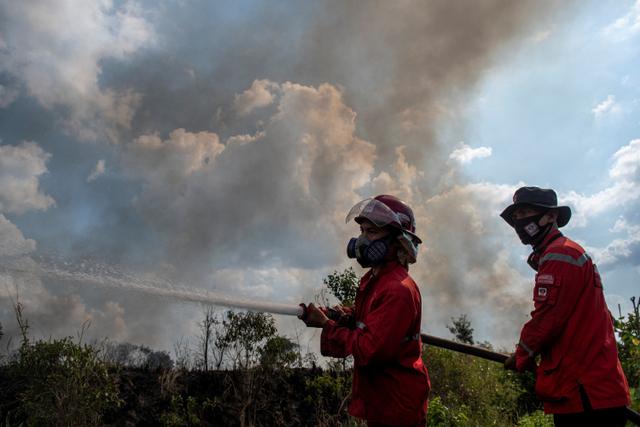 Foto: Lahan Seluas 15 Hektar Terbakar di Ogan Ilir (170990)