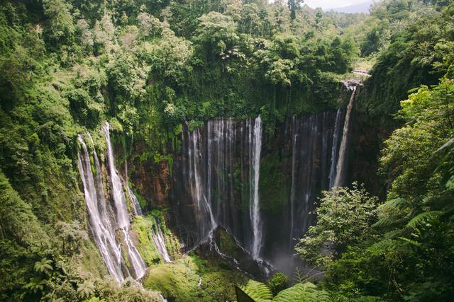 5 Rekomendasi Wisata Alam di Malang yang Menarik Dikunjungi untuk Melepas Penat (47689)