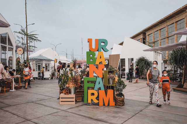 Pesan Makanan di Urban Farm sampai Pantjoran PIK Kini Bisa Lewat WhatsApp (26680)