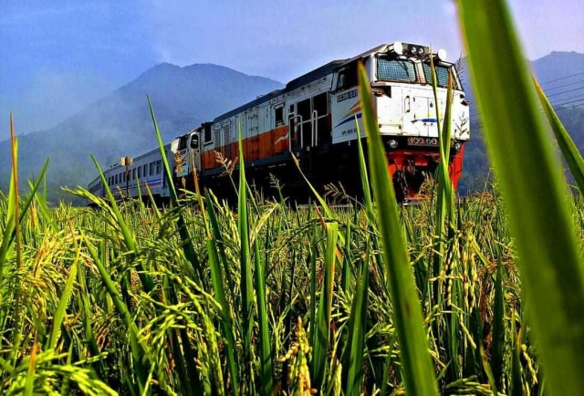 Sampai 25 Juli 2021, Naik Kereta Api Jarak Jauh Khusus Usia 18 Tahun ke Atas (39987)