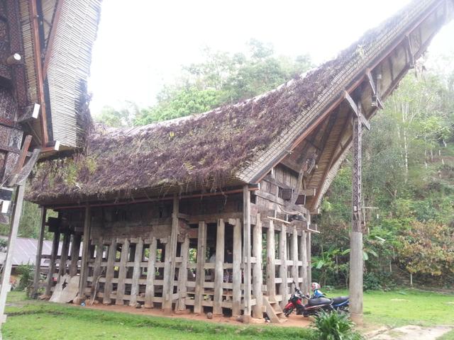 Rumah Adat Sulawesi Selatan: Tongkonan Si Hunian Khas Kebanggaan (55459)