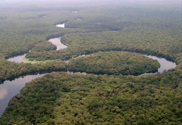 Taman Nasional Salonga Dikeluarkan dari Daftar Warisan Dunia dalam Bahaya (38934)