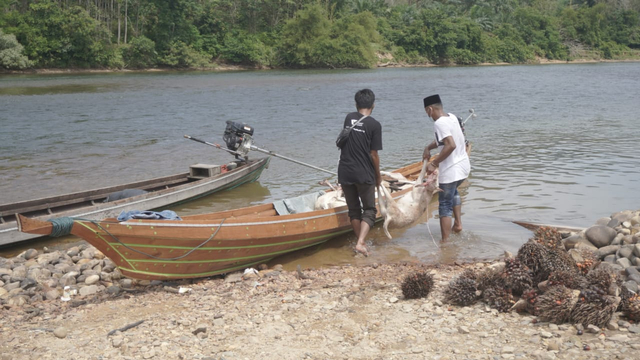 Akses Tak Mudah, DD Riau Distribusi THK ke Pedalaman Kampar (12124)