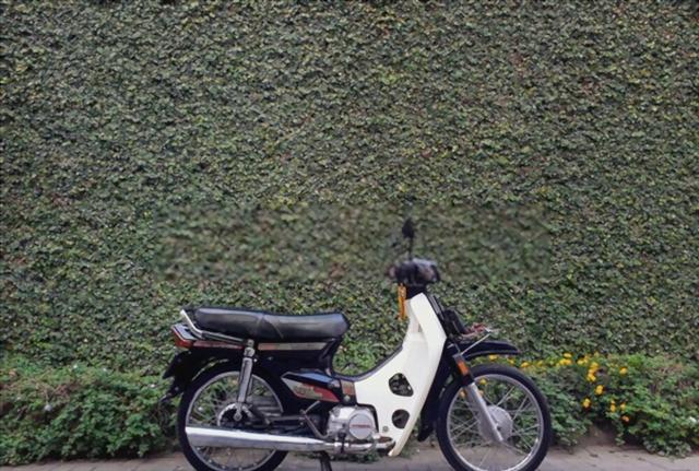Upaya Menjaga Motor Hasil Panen Singkong Abah (38586)