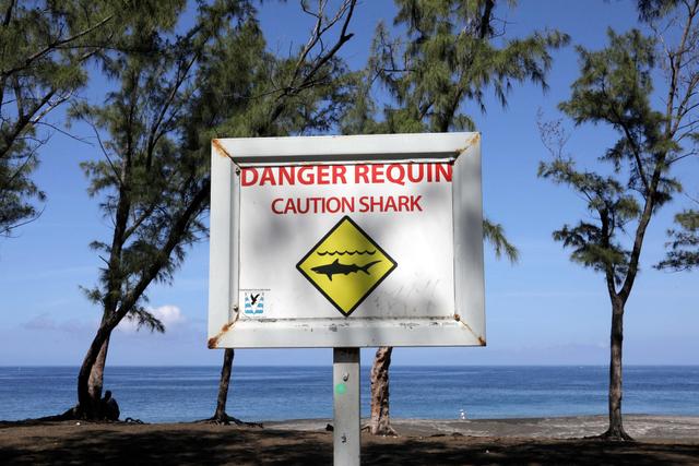 Nyawa Jadi Taruhan, Pulau Indah Ini Akhirnya Larang Turis Berenang (341317)