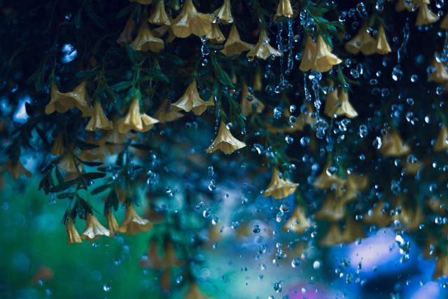 Doa Minta Hujan Turun dengan Penuh Berkah dan Bermanfaat (138097)