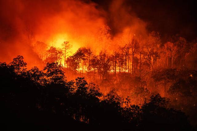 Faktor-faktor Penyebab Gangguan Keseimbangan Lingkungan (37800)