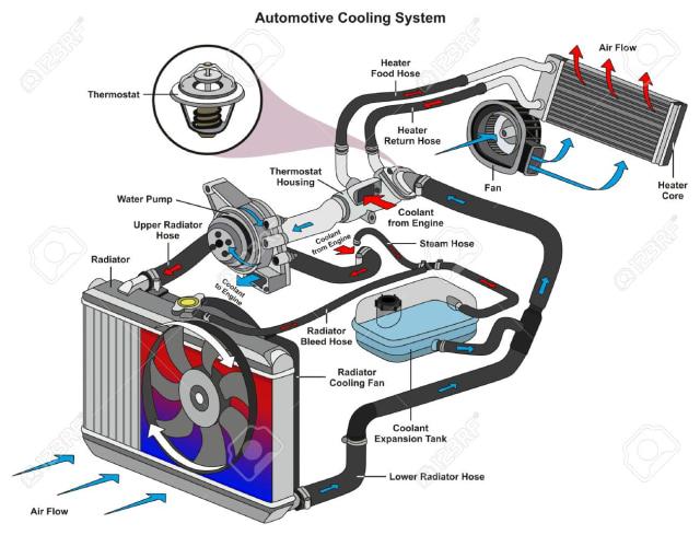 Thermostat pada Mobil, Berikut Fungsi dan Jenisnya (583558)