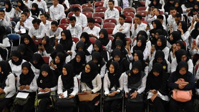 Pelamar CPNS Tidore Capai 2.419 Orang (373778)