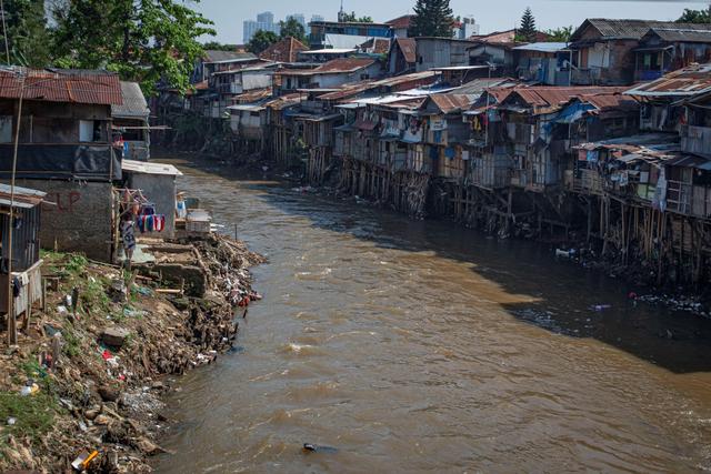 Teluk Jakarta Terkontaminasi Obat Paracetamol, Kok Bisa? (2)
