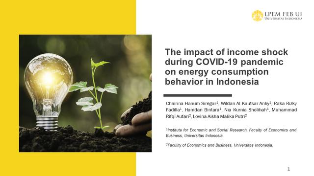 LPEM FEB UI: Pandemi COVID-19 Mendorong Masyarakat Menghemat Konsumsi Energi (908149)