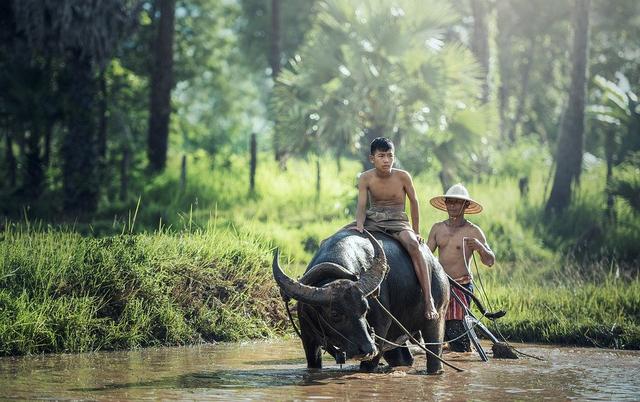 8 Contoh Sikap Menghargai Keberagaman di Indonesia (1240708)