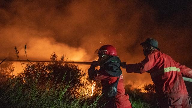 Foto: Upaya Pemadaman Kebakaran 15 Hektar Lahan di Ogan Ilir (59017)