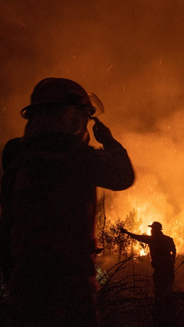 Foto: Upaya Pemadaman Kebakaran 15 Hektar Lahan di Ogan Ilir (59016)