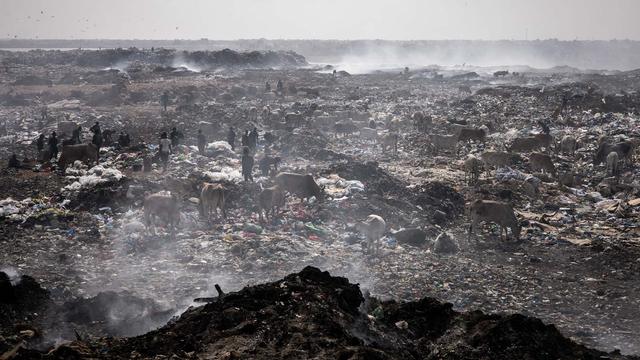 Foto: Bahaya Lingkungan dari Aktivitas di Pemulung Sampah di Senegal (166824)