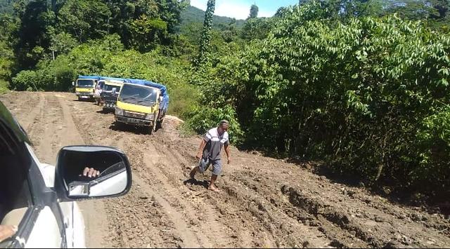 Wakil Ketua DPRD Tambrauw Sebut Kontraktor Tak Serius Kerjakan Jalan Nasional (858096)