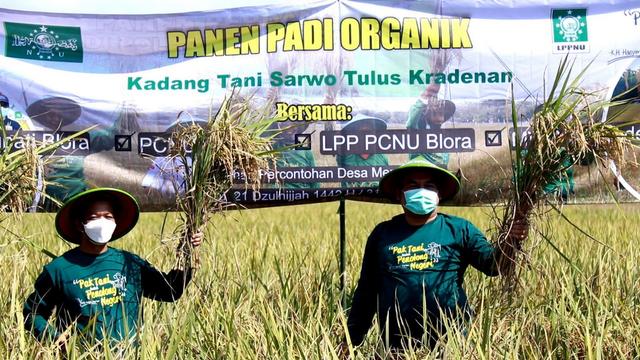 Bupati Dorong Petani Blora Beralih Tanam Padi Organik (977069)