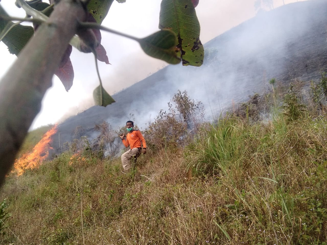 Satgas Karhutla Padamkan Api yang Bakar 14 Hektar Lahan di Dairi, Sumut (240604)