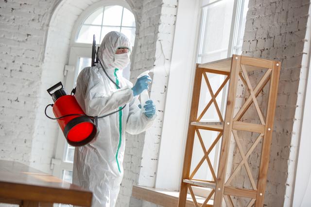 7 Rekomendasi Jasa Disinfektan Rumah Selama Masa Pandemi (824826)