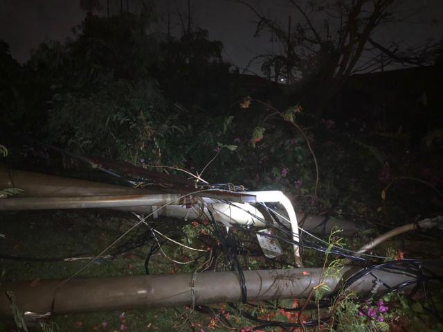Hujan Deras, Sejumlah Gardu dan Tiang Listrik di Bandar Lampung Tertimpa Pohon (315095)