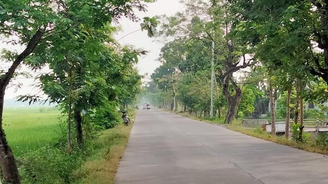 Progres Pembangunan Jalan Cor di Bojonegoro Capai 31 Persen (139798)