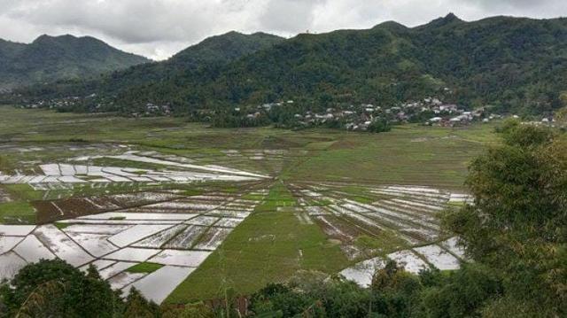 Dampak Pandemi COVID-19, Objek Wisata Sawah Lodok Cancar, Manggarai Sepi (163455)