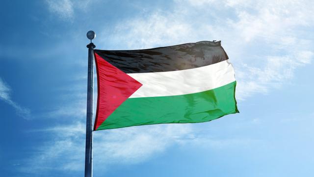 Polisi: Pemasang Bendera Palestina di Depok Tak Dipidana (64498)