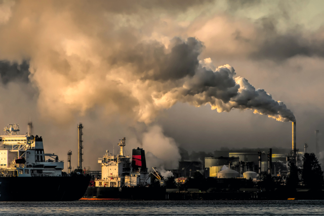 Krisis Iklim, Melihat Masa Depan Kopi dan BNI (805077)